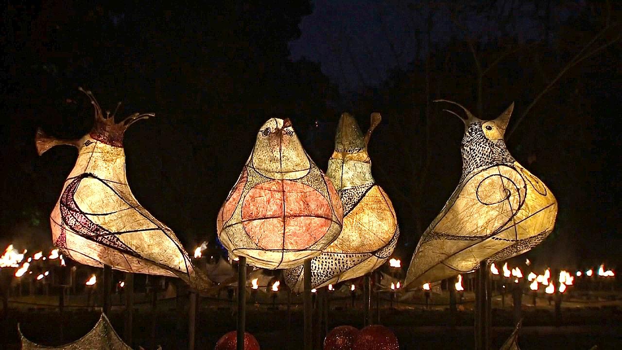 В ботаническом саду Лондона устроили сказку из света