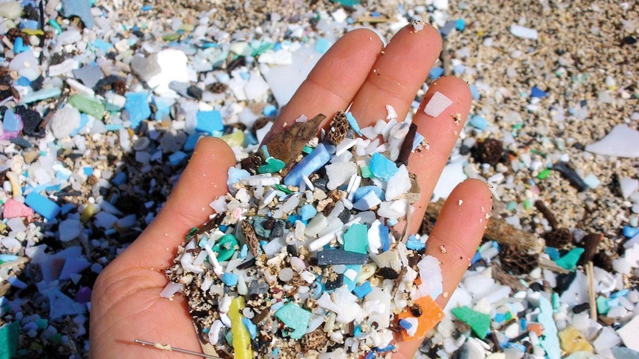 Мелкий пластик разрушает морскую экосистему