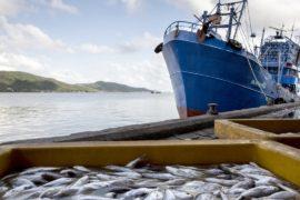 Рыболовецкие суда в Таиланде оборудуют системами слежения
