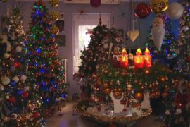 100 рождественских елей украсили дом в Германии