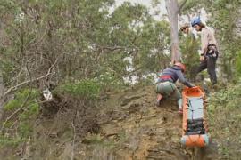Оказывать помощь в отдалённой местности учатся спасатели Австралии
