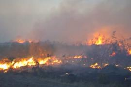 В Аргентине выгорело более миллиона гектаров степей