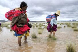 В Перу и Боливии начались наводнения