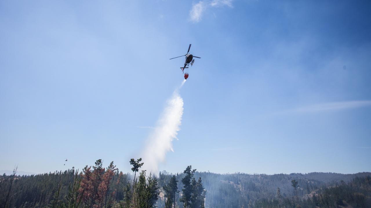 Лесные пожары в Чили: есть жертвы
