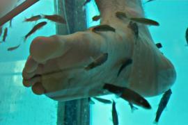 Пилинг рыбками предлагают попробовать в Копенгагене