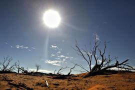 2016 год стал самым тёплым за всю историю наблюдений