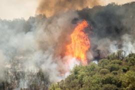 Президент Чили: «Страну охватили сильнейшие пожары в истории»