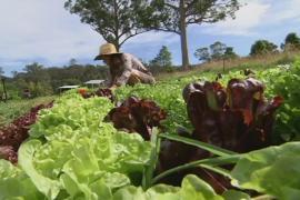 Австралия: продовольственная революция