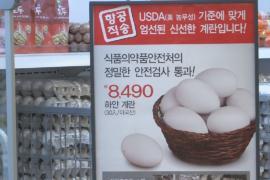 В Южной Корее начали продавать яйца из США из-за птичьего гриппа