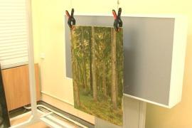 Украденную картину Шишкина изъяли в Беларуси