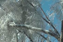 Исследователи воссоздали ледяной шторм, чтобы его изучить