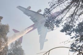 Самолёты из России, США и Бразилии тушат пожары в Чили