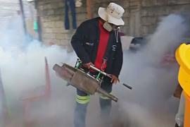 В Перу ввели ЧП, чтобы не допустить эпидемии денге