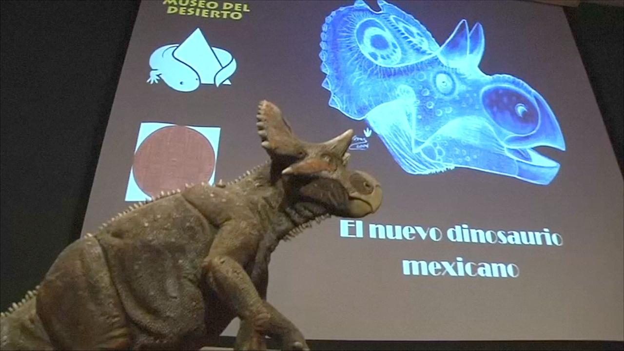 В Мексике представили новый вид травоядного динозавра