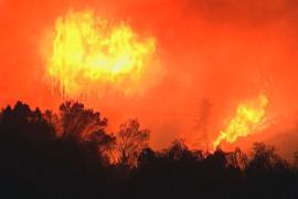 1000 человек эвакуированы в Новой Зеландии из-за лесного пожара