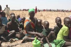 Южносуданцы едят водяные лилии, чтобы выжить