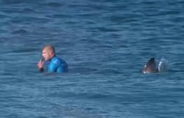 Переживший нападение акулы сёрфингист вернулся в спорт