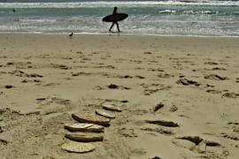 Фермер изобретает доску для сёрфинга из лемонграсса