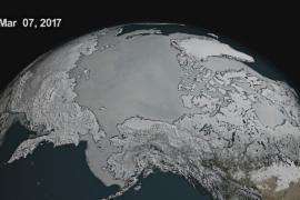 Льда в Северном Ледовитом океане стало рекордно мало