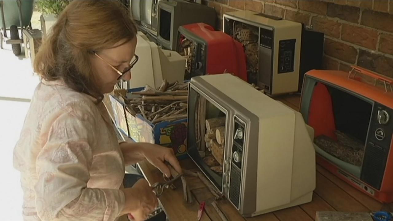 Из старых телевизоров делают ульи