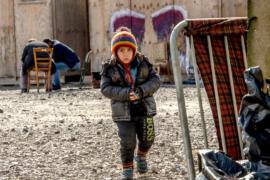 Брюссель призвал Венгрию уважать миграционные правила ЕС