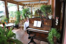 Пианино или рояль – различия и что выбрать