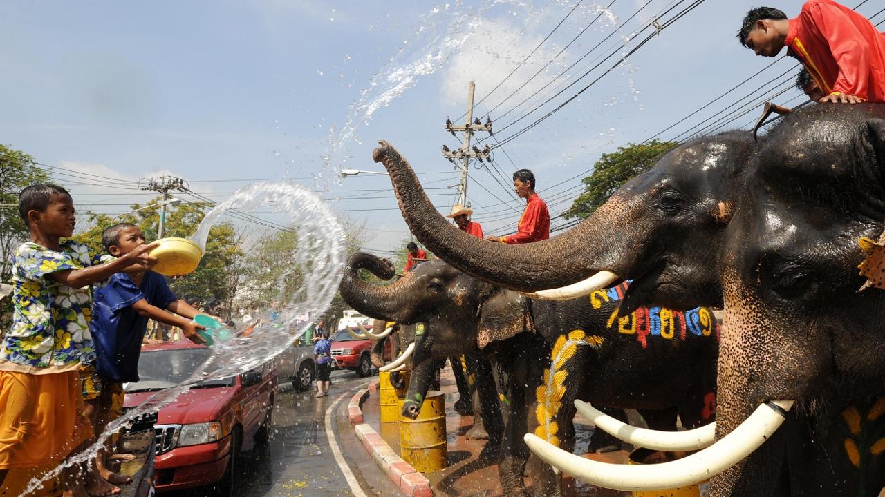 Туристы и слоны устроили водные бои в Таиланде