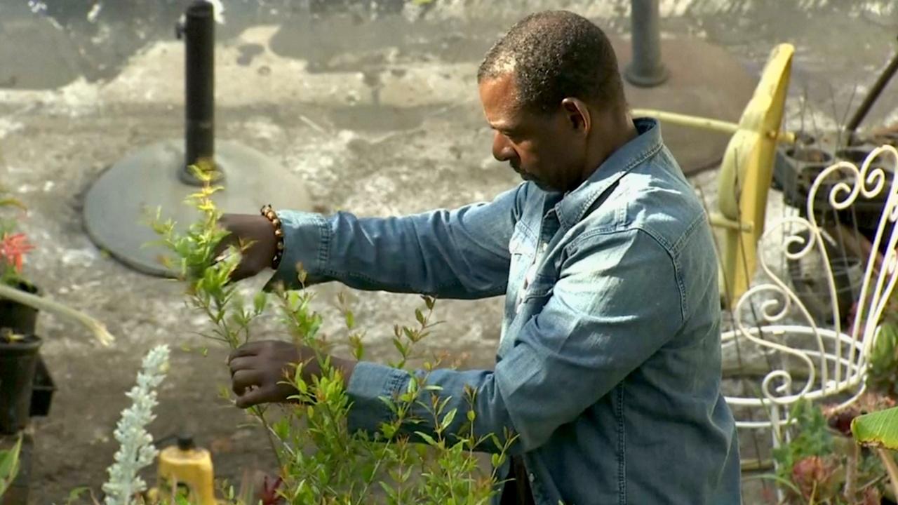 Американец хочет спасти фруктовый сад от застройщиков