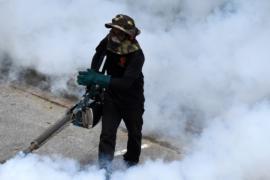 В Перу — вспышка лихорадки денге
