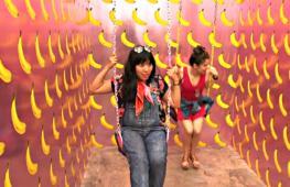 США: приключения в Музее мороженого