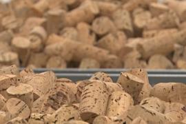 Отрасль винных пробок в Португалии преодолела кризис