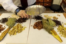Ботаники предупреждают: препараты китайской медицины нужно проверять