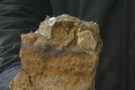 В чешском Циновце готовятся к добыче лития