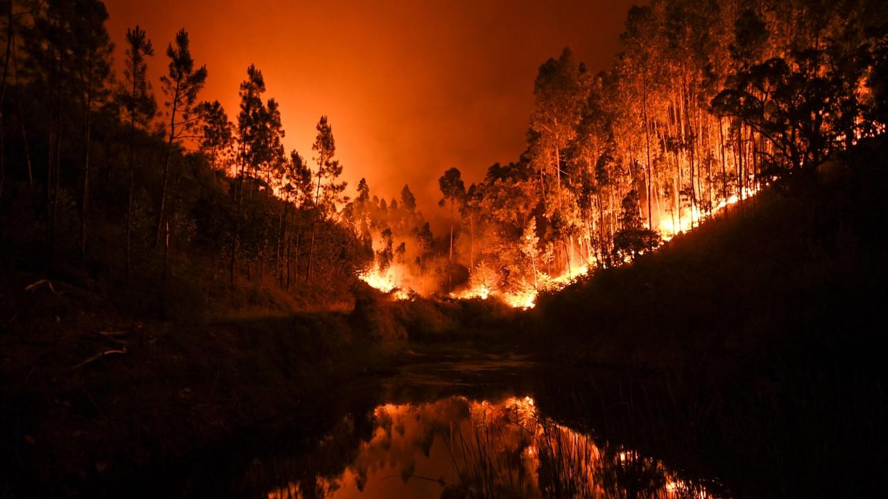 Сильнейшие лесные пожары в Португалии: 62 погибших