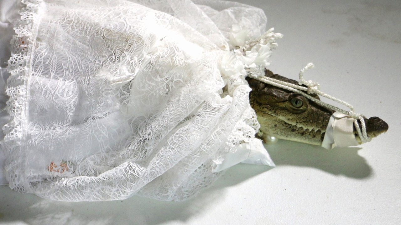 Зачем мэр мексиканского городка женился на крокодиле