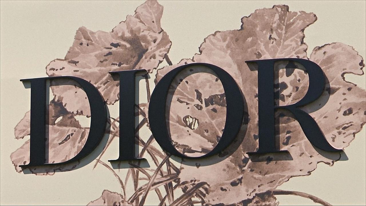 Модный дом Dior отметил 70-летие показом в Париже