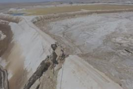«Цунами» токсичной воды убило растения и животных в израильской пустыне