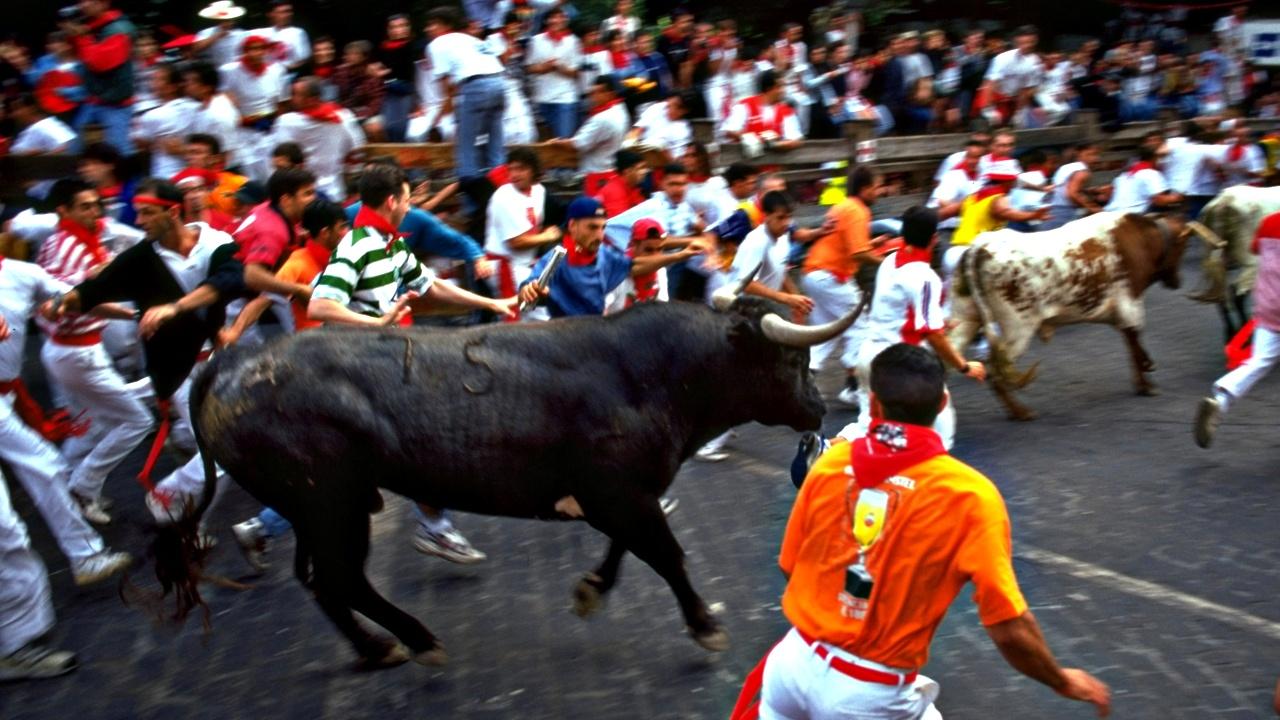 В Памплоне стартовала неделя забегов с быками