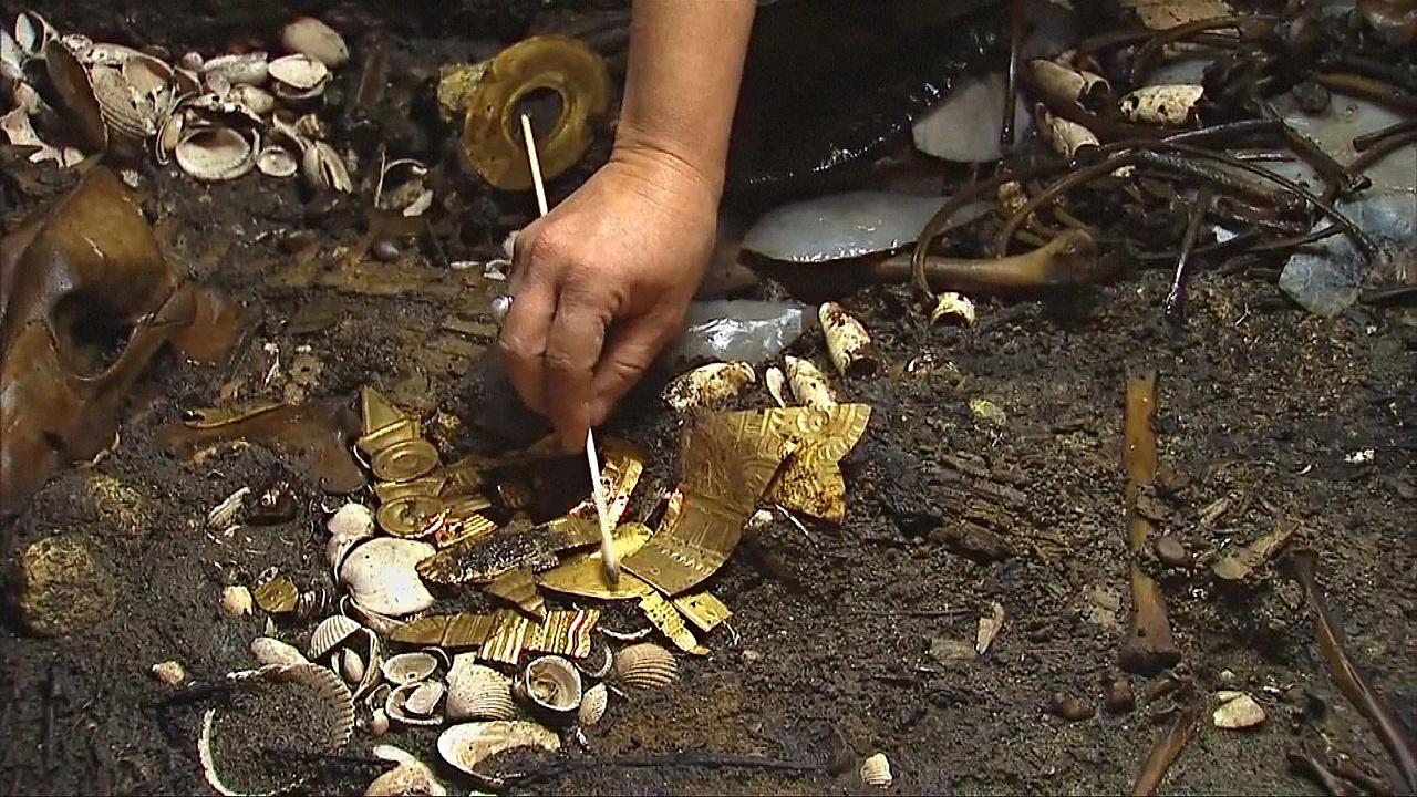Археологи нашли в Мехико останки волка, украшенные золотом