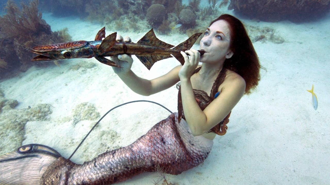Подводный музыкальный фестиваль прошёл среди островов Флорида-Кис