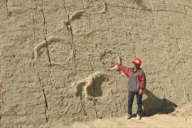 Боливия хочет статуса Всемирного наследия для «Стены динозавров»