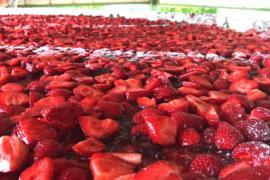 Гигантский клубничный пирог создал французский повар