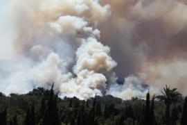 Сильный ветер не даёт потушить пожары во Франции и Португалии