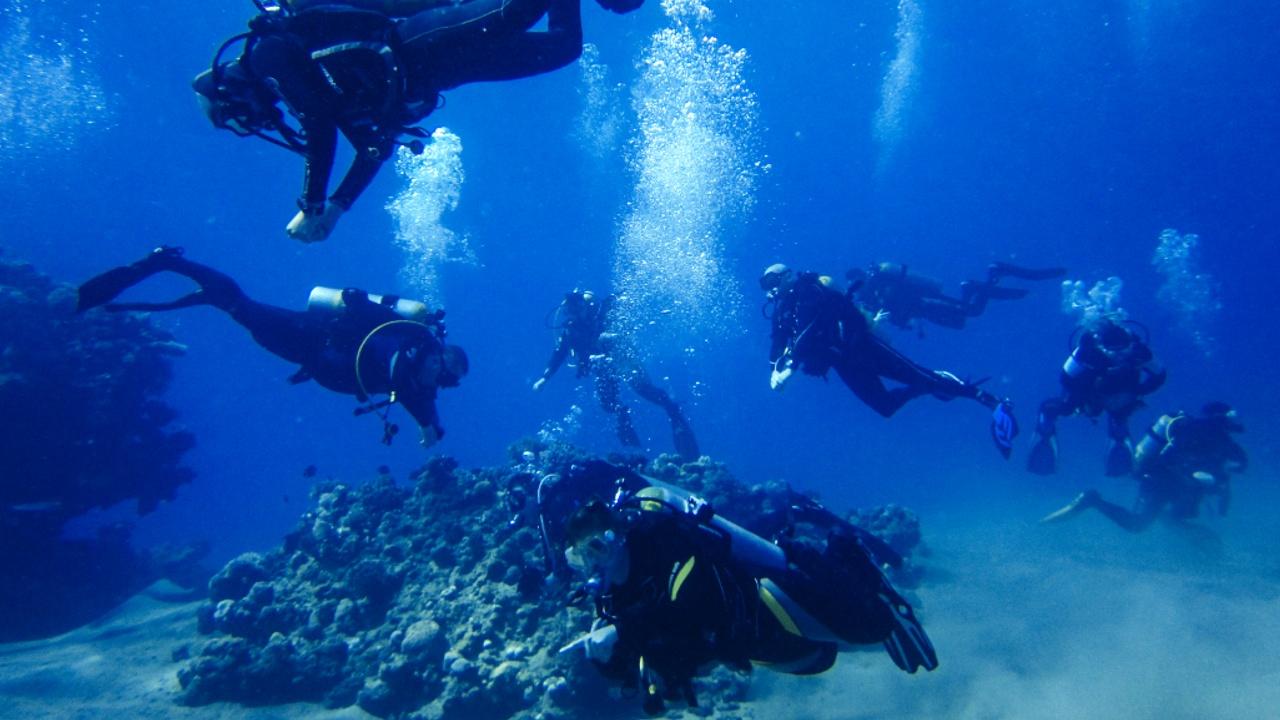 Богатое подводное наследие Албании откроют для дайверов-туристов