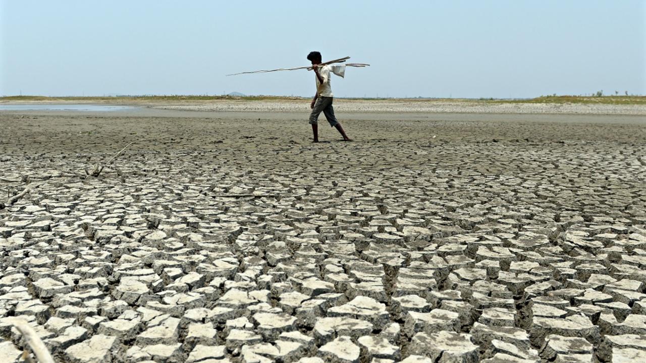К 2100 году Южная Азия может стать слишком жаркой для проживания