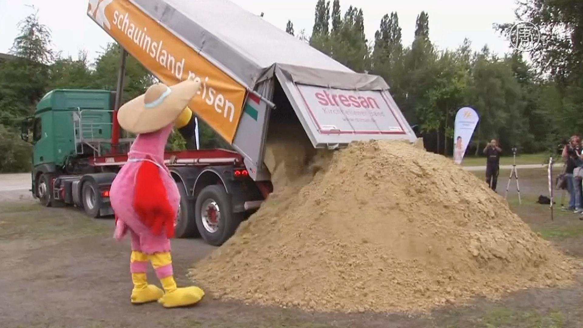 Замок из песка в Германии готовится побить рекорд Гиннесса