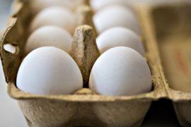 В Нидерландах арестовали двух подозреваемых в отравлении яиц фипронилом