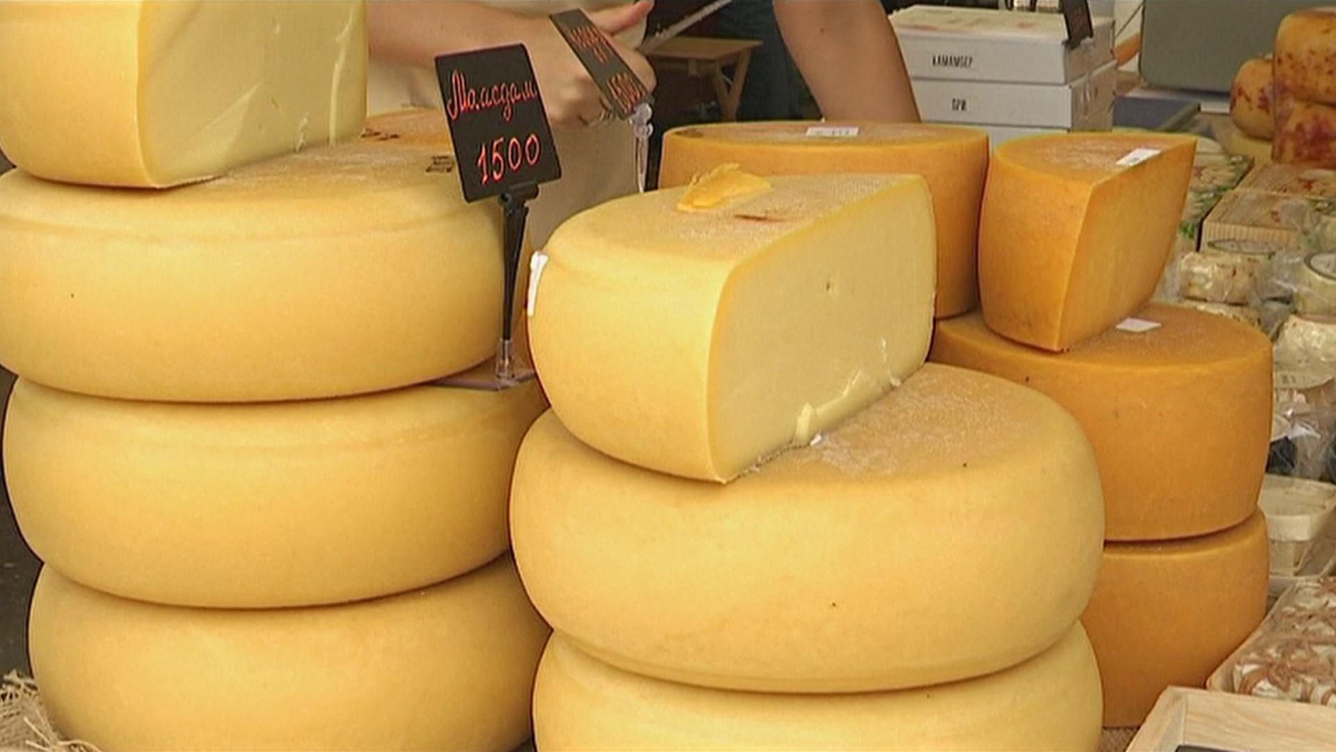 В России появилось больше сыроваров благодаря санкциям