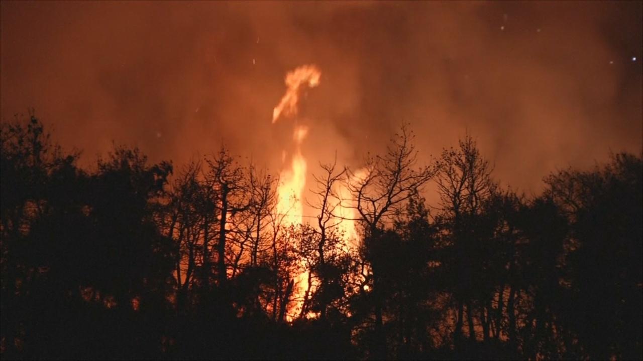 Недалеко от Афин горят жилые дома и эвакуируют жителей