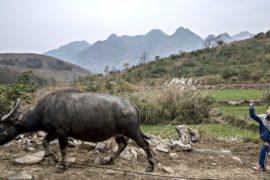 В деревнях Китая дети всё чаще бросают школы